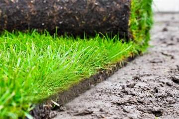 Zakładanie trawników